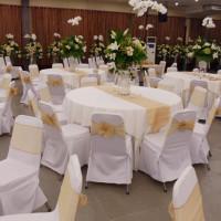 meja dan kursi pesta